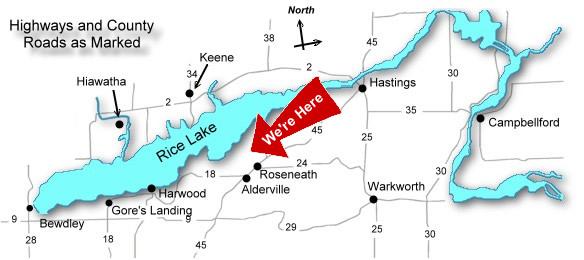Rice Lake Ontario Canada Map ABOUT RICE LAKE